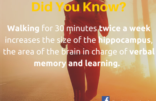 How walking can help in verbal memory and learning