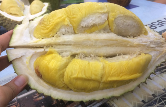 Is Durian Bad for Your Health? 6 Facts You Need to Know!