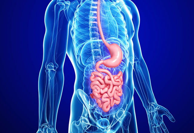 find a gastroenterologist digestive system doctor. Black Bedroom Furniture Sets. Home Design Ideas