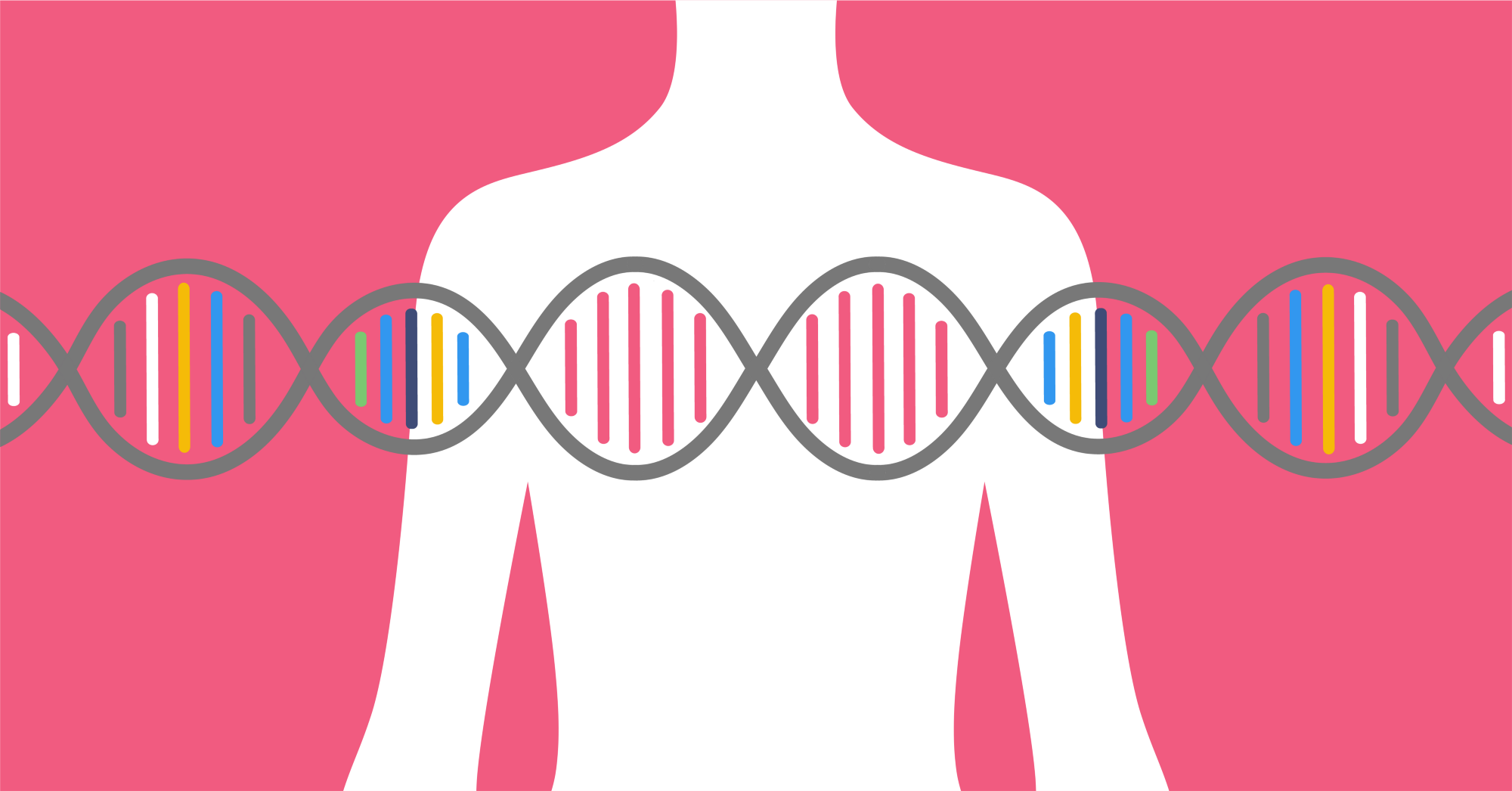 The Insider On Breast Cancer Gene The Fascinating Facts